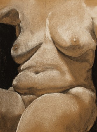 drawing-female torso-charcoal