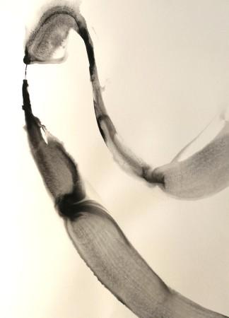 Alaria #34, acrylic, 22
