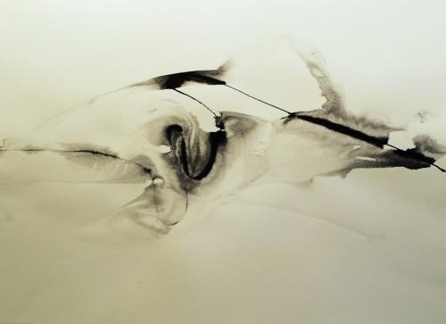 Alaria #42, acrylic, 22