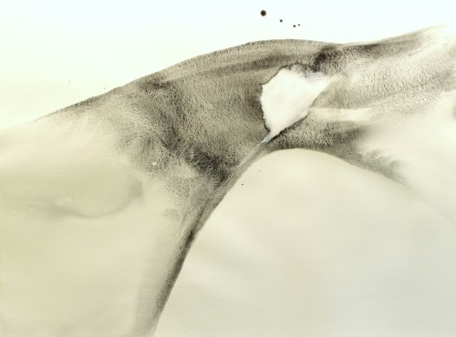 Alaria #9, acrylic, 22
